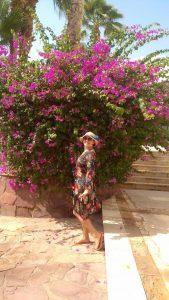 Египет,Шарм-Эль-Шейх, Рас ум эль Сид отель Club El Faraana Reef 4